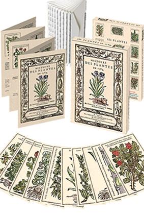 icone plantes