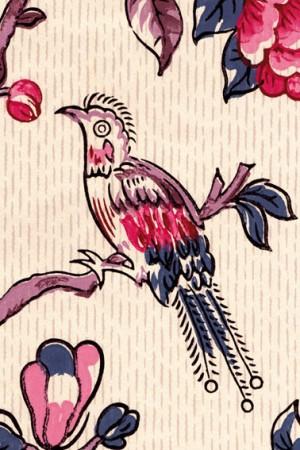 Oiseau rare site